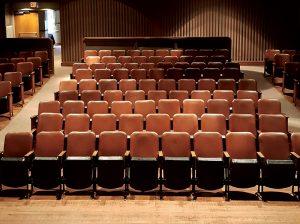 Tusten Theatre seating | DVAA